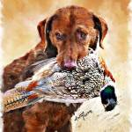 """Hunting Dog"" by NancyH"