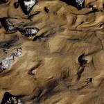 """Beach Texture 3"" by IanGill"