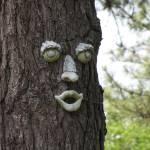 """Happy Tree"" by birdphotosandmore"