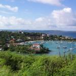 """""""St. Maarten"""" by birdphotosandmore"""
