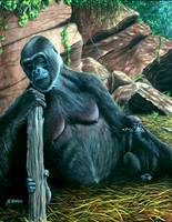 Mom's the Boss(Gorilla)
