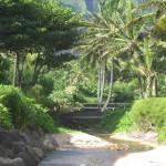 """""""Kauai"""" by patriciasandersgallery"""