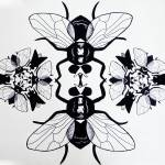 """""""flies"""" by TCRAWFORD"""