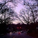 """Braddock Road"" by CricketNoel"