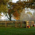 """Horse Farm Fence on Foggy Fall Morning 8609bg"" by CooperSlay"