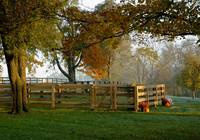 Horse Farm Fence on Foggy Fall Morning 8609bg