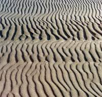 Windblown Sand