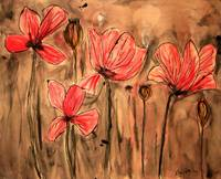 red poppies1