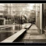 """""""I dream in Gray!"""" by CyrusMafi"""