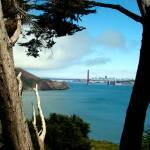 """""""San Francisco Bay"""" by spaffordj"""