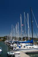 Sail Boats at Marina