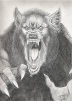 P.O.W. (Pissed Off Werewolf)