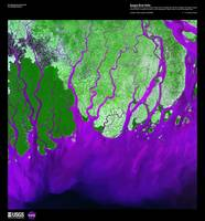 Ganges River Delta