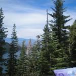 """""""Tahoe"""" by patriciasandersgallery"""