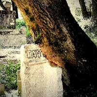 Old tombstone by Gary Miles