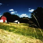 """Indiana Barn"" by fusionphoto"