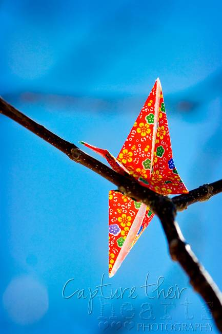 paper cranes for sale Find used and new cranes for sale amongst an extensive inventory of 6,399 listings on machineryzone.