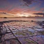 """Tessellated Pavement at Dawn"" by jasonpang88"