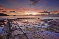 Tessellated Pavement at Dawn