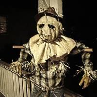 Scarecrow by Gary Miles