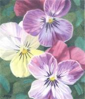 Three Violas