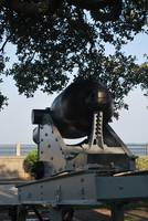 cannon in Charleston Battery