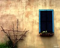 Window On A Wall