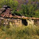 """Ruins"" by rbatista"