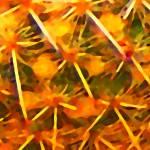 """Cactus Pattern"" by AmyVangsgard"
