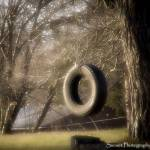 """Tire Swing"" by midwest_cinnamon_sunset"