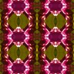 """Magenta Crystal Pattern"" by AmyVangsgard"