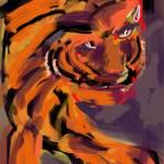 """Tigre"" by hgberk"
