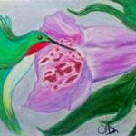 """FOXGLOVE & HUMMINGBIRD"" by 13christi1796"
