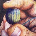 """""""An Acorn in the Hand"""" by waldeneffect"""