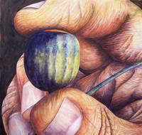 An Acorn in the Hand