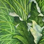 """Maple Leaf"" by waldeneffect"