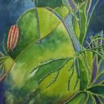"""""""Ground Pine"""" by waldeneffect"""