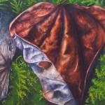 """""""Dried Redbud Leaf"""" by waldeneffect"""