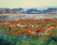 Poppies in Flanders Fields