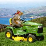 """Squirrel Series Lawn Service"" by charlieishere"