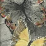 """Butterflys"" by GAYLENE"