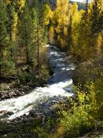 Fall on the Piedra River