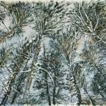 """Pine tree Final Edit-reduced4etsy"" by cedarraven"