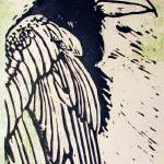 """2009Mar7-Raven"