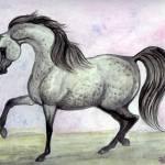 """""""Arabian Dancing"""" by EquineArtTreasures"""
