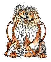 Afghan Hound Dog Art Puppy Love