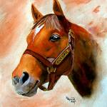 """Horse Portrait,Alydar"" by Texaslady"