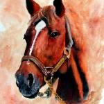 """Horse Portrait,Secretariat"" by Texaslady"