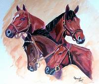 Horse Portraits,Whirlaway, Count, Fleet Assault, C