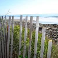 Broken Fence in Goleta Art Prints & Posters by Jackie Joice